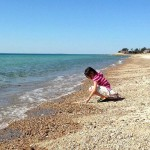 Child on Beach in Woods Hole