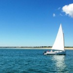 Sail Boat in Woods Hole